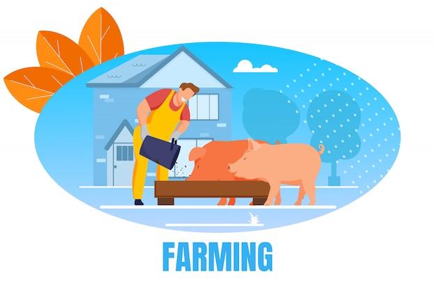 Człowiek karmi świnie, umieszczając ziarno w korycie w inwentarzu Premium Wektorów