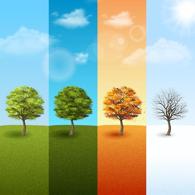 Cztery sezonów tła wektoru ilustracja Premium Wektorów