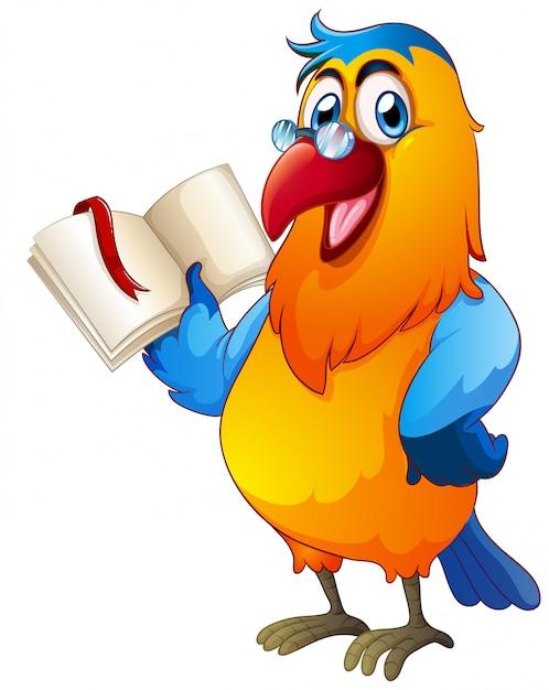 Czytanie Książki Papugi Premium Wektorów