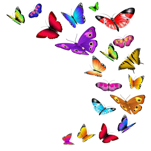 Dekoracja latających motyli Premium Wektorów