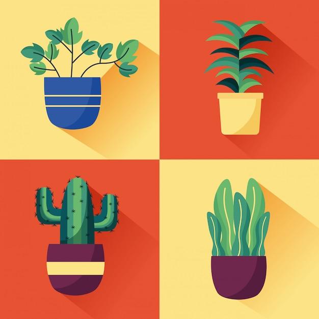 Dekoracja Wnętrz Roślin Ozdobnych Darmowych Wektorów