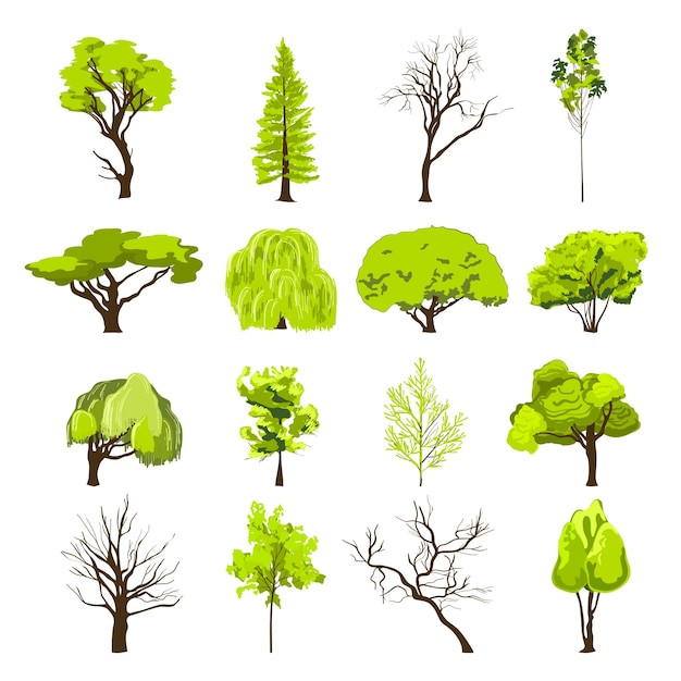 Dekoracyjne Liści Liściastych I Drzew Iglastych Drzew Parku Silhouette Abstrakcyjna Projektu Ikony Zestaw Szkic Izolowane Ilustracji Wektorowych Darmowych Wektorów