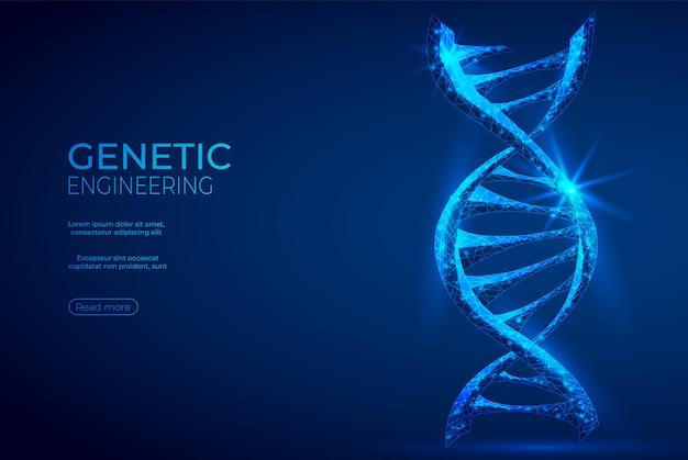 Dna wielokątne inżynierii genetycznej streszczenie niebieski transparent. Premium Wektorów
