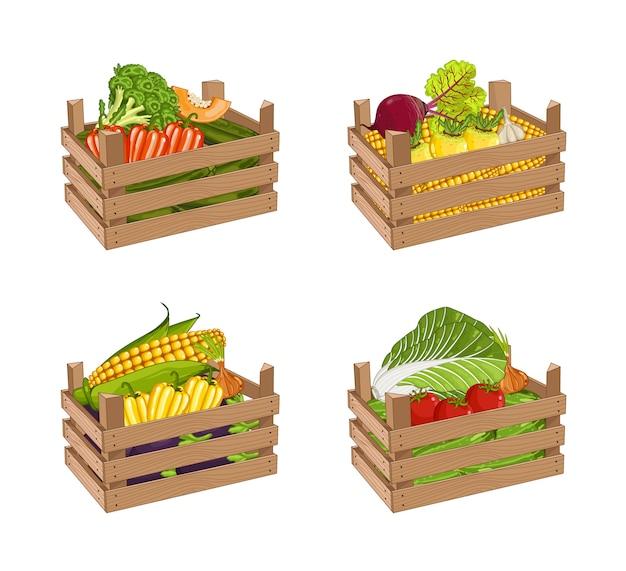 Drewniany pudełko pełno warzywo ustawia odosobnionego wektor Premium Wektorów
