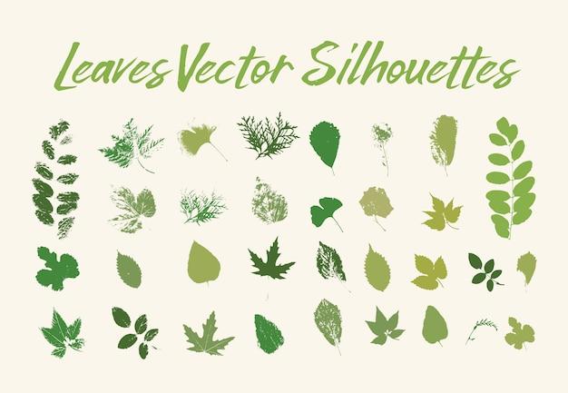 Drukuj liście drzew. zieleń flory lub roślin Darmowych Wektorów