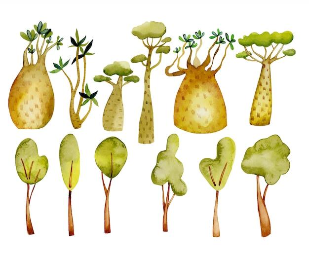 Drzewa akwarelowe, tropikalne baobaby i kwiatowy zestaw elementów Premium Wektorów