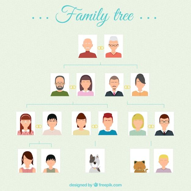 Drzewo Genealogiczne Darmowych Wektorów