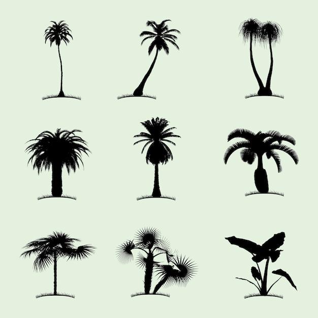 Drzewo Kolekcja Ikona Płaski Z Dziewięcioma Tropikalnymi Palmami Różnego Rodzaju Ilustracji Darmowych Wektorów