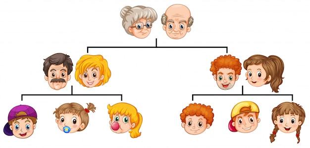 Drzewo Rodzinne Darmowych Wektorów