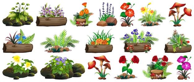 Duży zestaw kolorowych kwiatów na skałach i drewnie Darmowych Wektorów