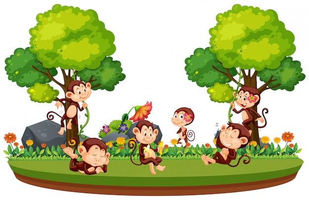Dzika małpa w lesie Premium Wektorów