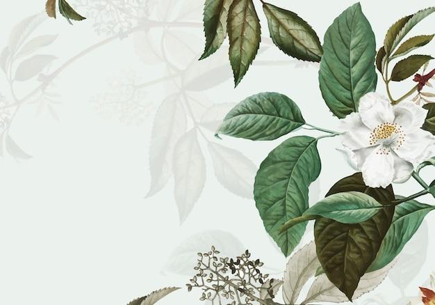 Dzika róża rama Darmowych Wektorów