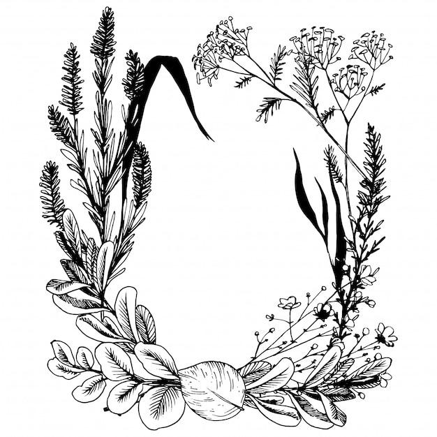 Dzikie Zioła I Kwiaty Pomalowane Czarną Linią. Premium Wektorów