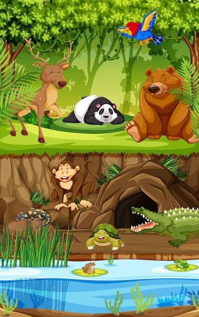 Dzikie zwierzę w dżungli Premium Wektorów