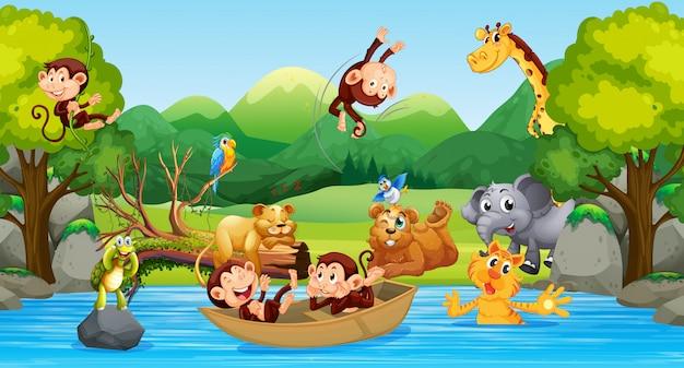 Dzikie zwierzęta w lesie Darmowych Wektorów