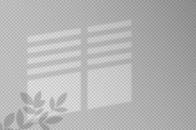 Efekty Cienia. Cień I światło Z Okna I Roślin. Odbicie światła Na ścianie. Przezroczyste Odcienie Do Twojego Projektu. Ilustracja. Premium Wektorów