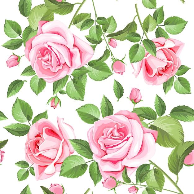 Eleganckie róże i liście bez szwu Premium Wektorów