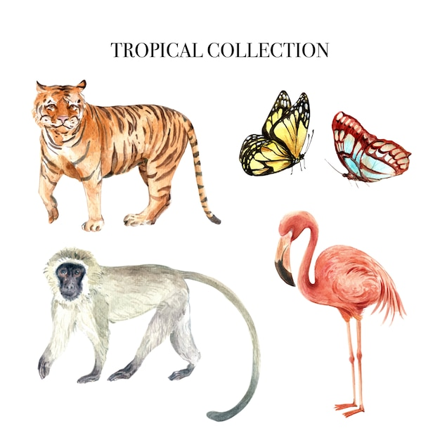 Element Projektu Akwarela Z Dzikimi Zwierzętami Ilustracji Do Użytku Dekoracyjnego. Darmowych Wektorów