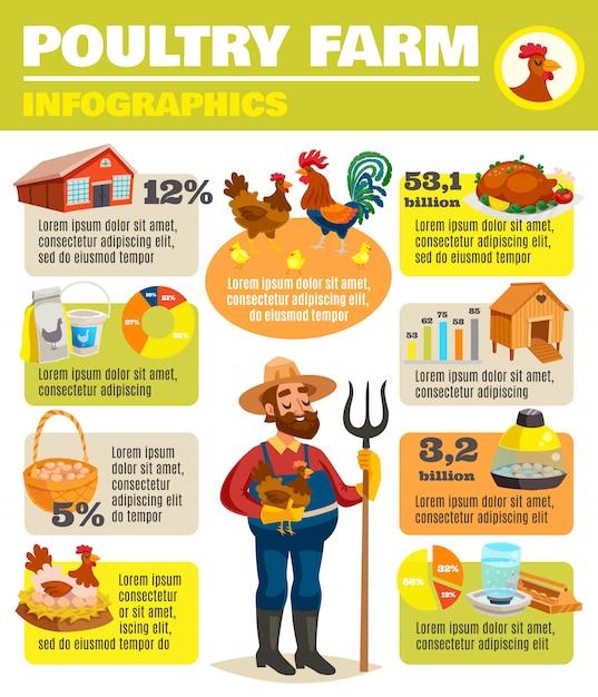 Farma Drobiu Infographic Plakat Darmowych Wektorów