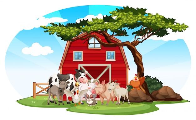 Farma Sceny Ze Zwierzętami Darmowych Wektorów