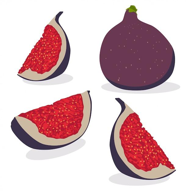 Figi Całe I Pokrojone. Wektorowa Kreskówka Ustawiająca Lato Tropikalnej Owoc Ilustracja Odizolowywająca Premium Wektorów