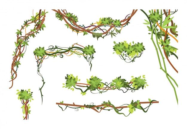 Gałęzie Winorośli W Dżungli. Kreskówka Wiszące Rośliny Liany. Kolekcja Zielonych Roślin Wspinaczkowych W Dżungli Premium Wektorów