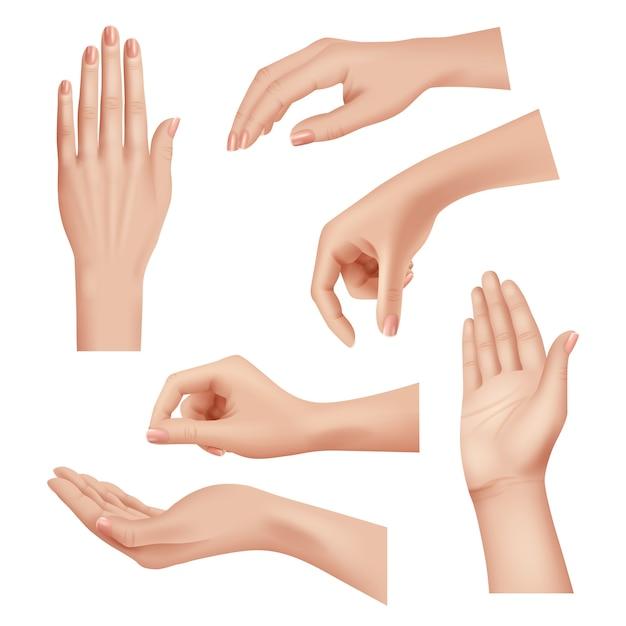Gesty Rąk. Kobieta Pielęgnująca Skórę Dłoni I Palców Paznokcie Kobieta Kosmetyki Ręce Realistyczny Wektor Zbliżenie. Kobieta Dłoni, Palce Dziewczyna Pozycja Inna Ilustracja Premium Wektorów