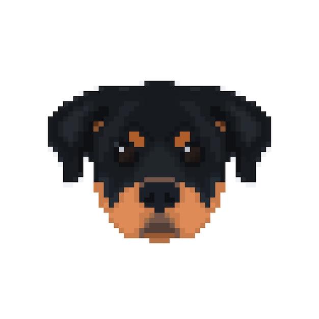 Głowa Rottweilera W Stylu Pikselowym. Premium Wektorów