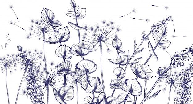 Grafika liniowa letnich kwiatów lawendy Premium Wektorów