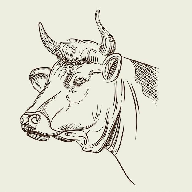 Grafika wektorowa głowy krowy Premium Wektorów