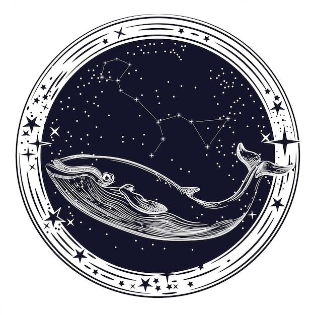 Grafika wektorowa wieloryba i konstelacji wieloryba Premium Wektorów