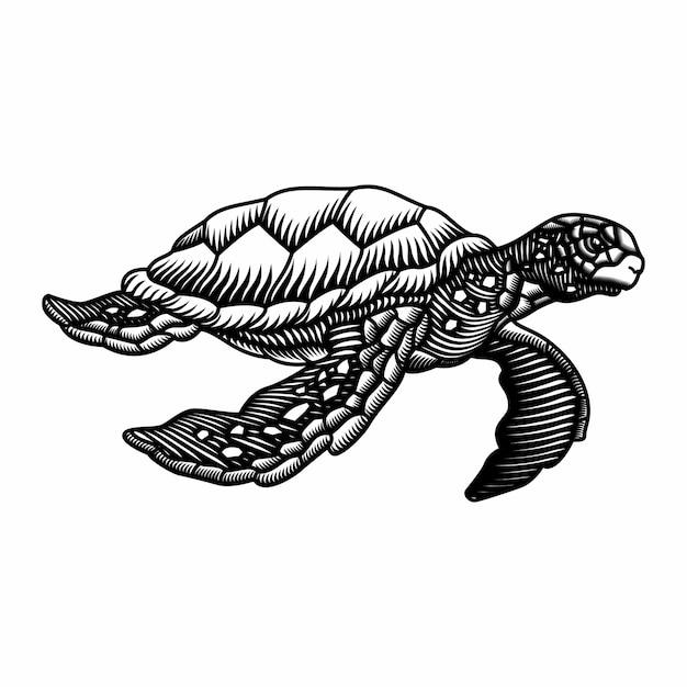 Grawerowanie Stylu Ręcznie Rysowane Ilustracji żółwia Morskiego Premium Wektorów