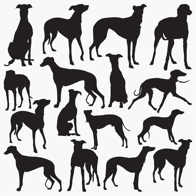 Grey hound silhouettes Premium Wektorów