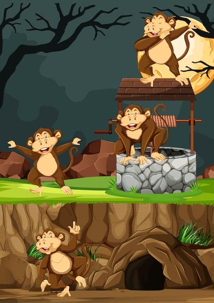 Grupa Dzikich Małp W Wielu Pozach W Stylu Cartoon Park Zwierząt Na Tle Nocy Darmowych Wektorów
