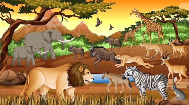 Grupa Dzikich Zwierząt Afrykańskich Na Scenie Lasu Darmowych Wektorów