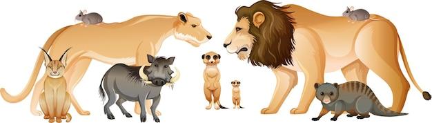 Grupa Dzikich Zwierząt Afrykańskich Darmowych Wektorów