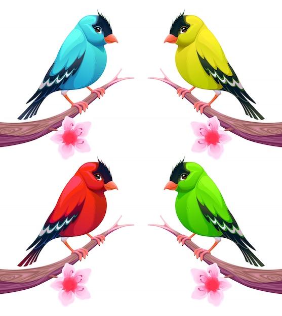 Grupa Ptaków W Różnych Odcieniach Kolorystycznych Vector Cartoon Odizolowane Znaków Darmowych Wektorów