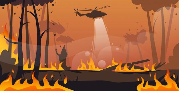 Helikopter Gasi Niebezpieczny Pożar W Australii Pożar Drzewa Suchy Pożar Drzewa Katastrofy Naturalne Intensywny Pomarańczowy Płomienie Premium Wektorów