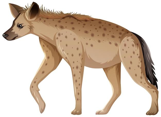 Hiena Zwierzę Na Białym Tle Darmowych Wektorów
