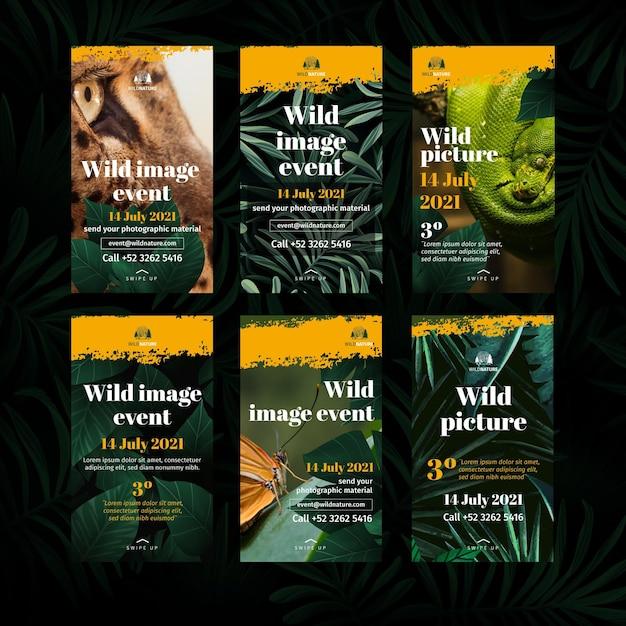 Historie Z Instagrama Dzikiej Przyrody Darmowych Wektorów