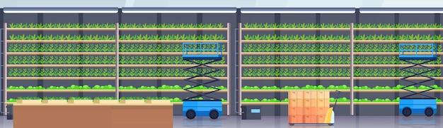 Hydrauliczne Nożyce Podnośnikowe Platformy Podnośnikowe Wózki Paletowe W Nowoczesnym Organicznym Hydroponicznym Pionowym Gospodarstwie Rolnym Wnętrze Rolnictwo System Rolnictwa Koncepcja Rośliny Zielone Uprawy Przemysłu Poziomo Premium Wektorów