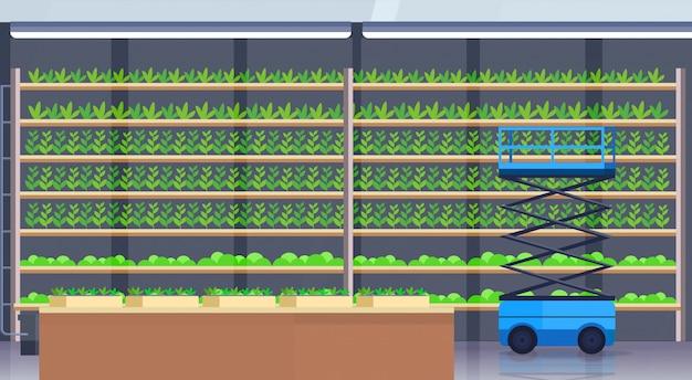 Hydrauliczne Nożyce Podnośnikowe Platformy W Nowoczesnym Organicznym Hydroponicznym Pionowym Gospodarstwie Rolnym Wnętrze Rolnictwa System Rolnictwa Koncepcja Rośliny Zielone Uprawy Przemysłu Poziomo Premium Wektorów