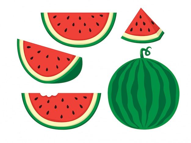 Ilustracja arbuza Premium Wektorów