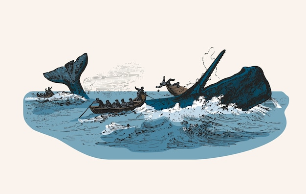 Ilustracja Kaszalot Podczas Gdy Atakujący łódź Rybacką Darmowych Wektorów