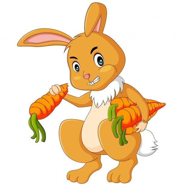Ilustracja króliki je marchewki kreskówkę Premium Wektorów