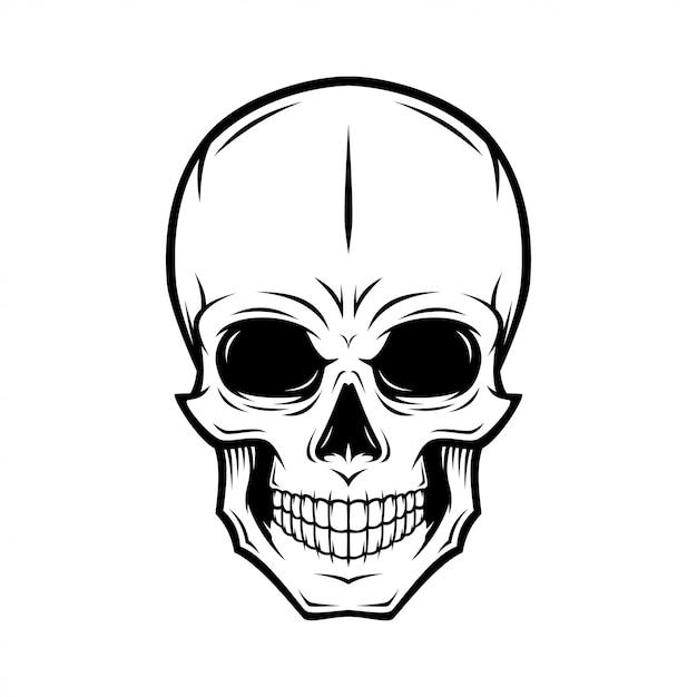 Ilustracja ludzkiej czaszki Premium Wektorów