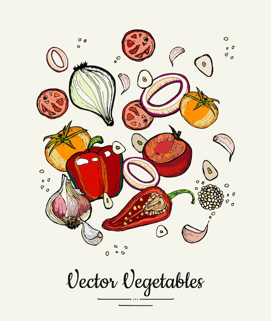 Ilustracja na białym tle ręcznie rysowane warzyw. wektor hipster ręcznie rysowane kolorowe warzywa na plakat wegetariański Premium Wektorów