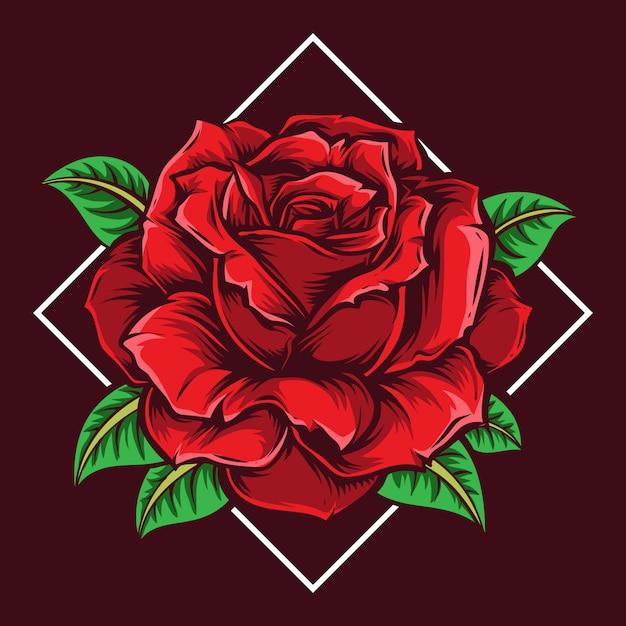 Ilustracja Wektorowa Kwiat Róży Premium Wektorów