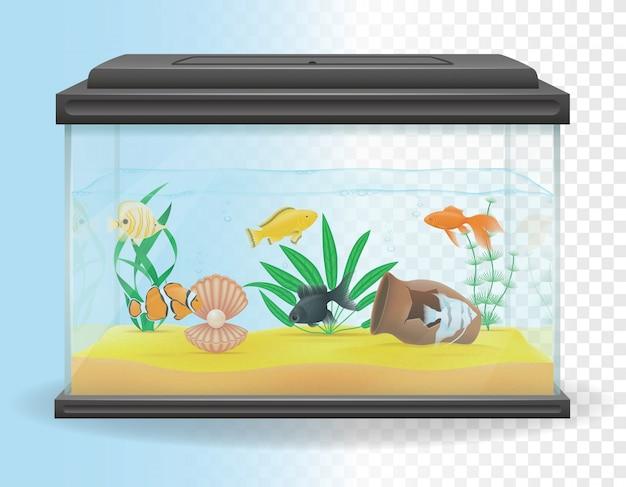 Ilustracja Wektorowa Przezroczyste Akwarium Premium Wektorów