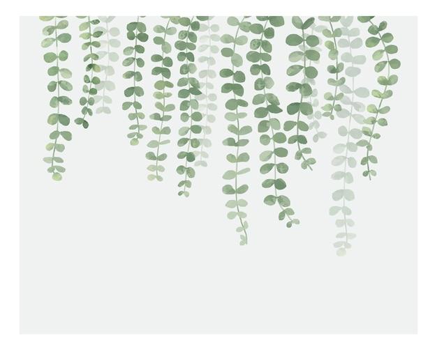 Ilustracja wisząca roślina odizolowywająca na białym tle Darmowych Wektorów